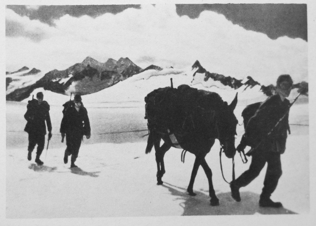 A detachment of German mountain troops crosses a high-altitude snowfield in the Caucasus in 1942
